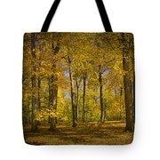 Autumn Forest Scene In West Michigan No.1140 Tote Bag
