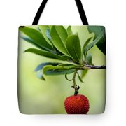 Autumn Fruits In Red Tote Bag