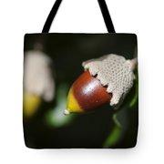 autumn fruits - Mediterranean acorn macro Tote Bag