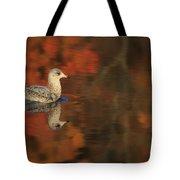 Autumn Gull Tote Bag