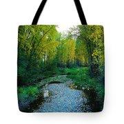 Autumn Hue  Tote Bag
