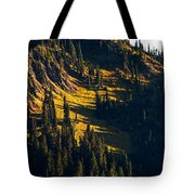 Autumn In A High Mountain Meadow Tote Bag