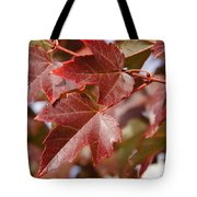 Autumn In My Back Yard Tote Bag