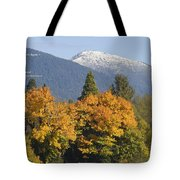 Autumn In The Illinois Valley Tote Bag