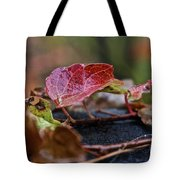 Autumn Ivy In Red Tote Bag