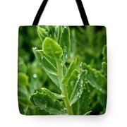 Autumn Joy Stonecrop Tote Bag