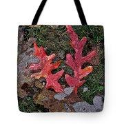 Autumn Leaf Art IIi Tote Bag