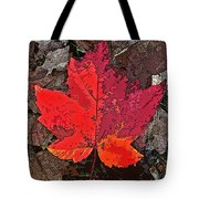 Autumn Leaf Art Iv Tote Bag