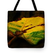Autumn Leaf Tote Bag by Daniele Smith
