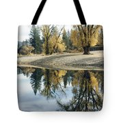 Autumn Leaves Growing Along A Gravel Tote Bag