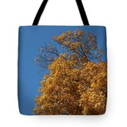 Autumn Leaves In Tn Tote Bag