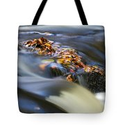 Autumn Leaves In Water Tote Bag