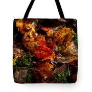 Autumn Leaves On The Moss Tote Bag