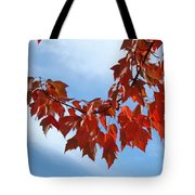 Autumn Leaves Tree Red Orange Art Prints Blue Sky White Clouds Tote Bag
