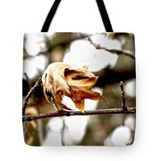 Autumn Leftovers Tote Bag