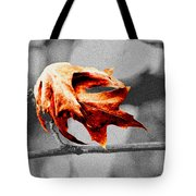 Autumn Leftovers II Tote Bag
