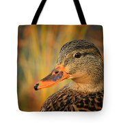 Autumn Mallard Tote Bag