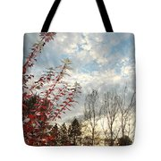 Autumn Maple And Sky Tote Bag