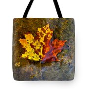 Autumn Maple Leaf In Water Tote Bag