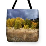 Autumn Meadow Tote Bag by Carol Cavalaris