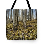 Autumn Memoirs  Tote Bag