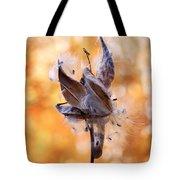 Autumn Milkweeds Tote Bag