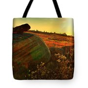Autumn Morn In The Berry Field Tote Bag