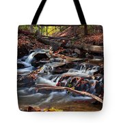 Autumn Moving Water With Foliage Tote Bag