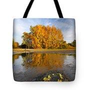 Autumn Nest Tote Bag