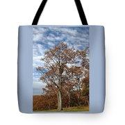 Autumn Oaks White Clouds Tote Bag