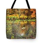 Autumn On Long Island Tote Bag