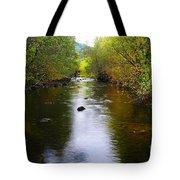 Autumn On Satus Creek  Tote Bag