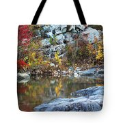 Autumn On The Black River 1 Tote Bag