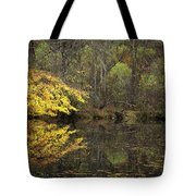 Autumn On The Pond Tote Bag