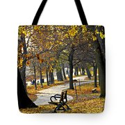 Autumn Park In Toronto Tote Bag by Elena Elisseeva