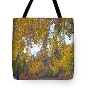 Autumn Picnic Spot Tote Bag