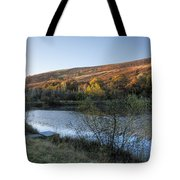 Autumn Pond 3 Tote Bag