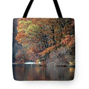 Autumn Pond Reflections Tote Bag