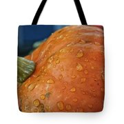 Autumn Rain Drops Tote Bag