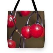 Autumn Red Berry Sparkle Tote Bag