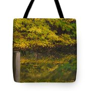 Autumn Reflections_0138 Tote Bag