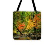 Autumn Reflects Tote Bag