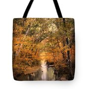 Autumn Riches 2 Tote Bag