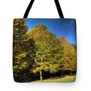 Autumn Row Tote Bag
