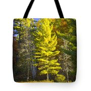Autumn Scene Of Colorful Trees On The Little Manistee River In Michigan No. 0855 Tote Bag