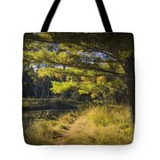 Autumn Scene Of The Little Manistee River In Michigan No. 0882 Tote Bag