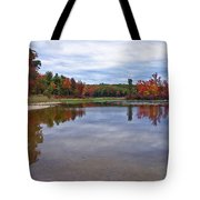 Autumn Shoreline Tote Bag