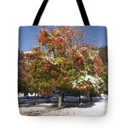 Autumn Snow Tote Bag