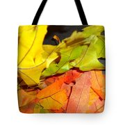 Autumn Spotlight Tote Bag