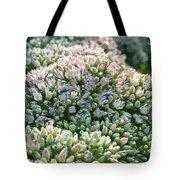 Autumn Stonecrop Tote Bag